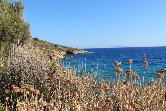 Andros, Greece: The view from the road above the beach.