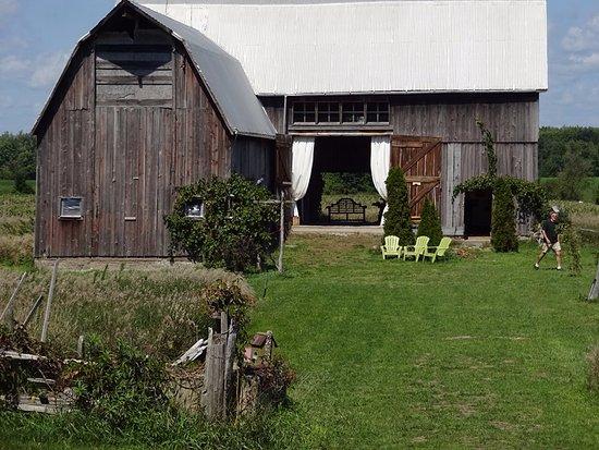 Bloomfield, Canadá: Barn Gallery