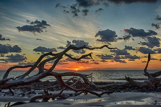 awesome photography place picture of driftwood beach jekyll