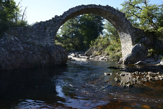 Carrbridge Hotel: atraccion cercana