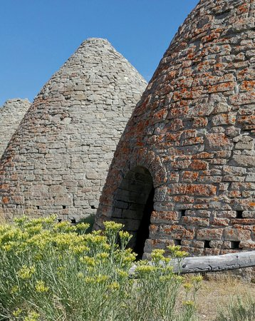 Ward Charcoal Ovens State Historic Park: 0825161619b_large.jpg