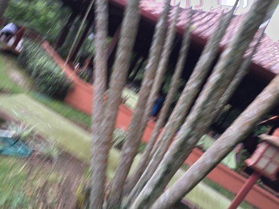 Rincon de La Vieja, Costa Rica: photo3.jpg