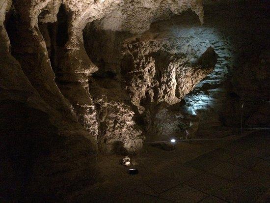 Waitomo Caves, New Zealand: Höhle des Polyphem