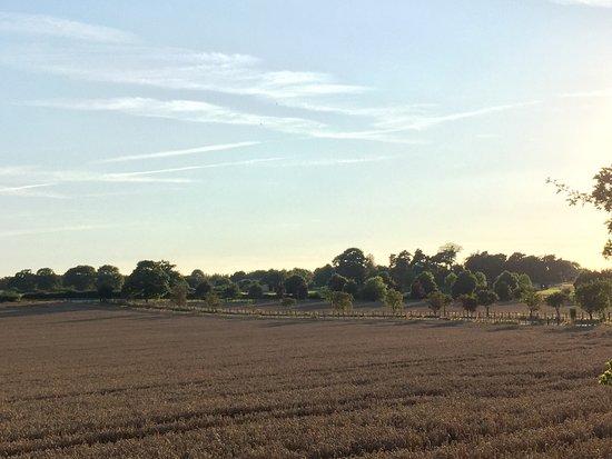 Burton upon Trent, UK: photo2.jpg