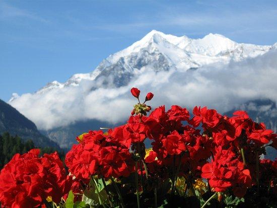 Grächen, Suisse : Und den Bick hat man auch von da, umwerdend!