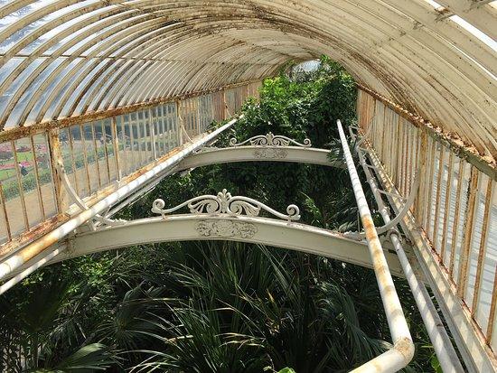 Kew, UK: photo9.jpg