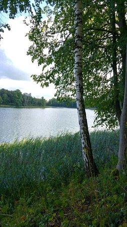 Ignalina, Lituanie : Pas Nijole