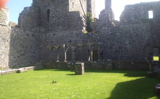 County Westmeath, Irlanda: The courtyard at Fore Abbey.