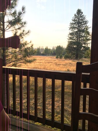 Lodge at Whitehawk : View from Pinto cabin