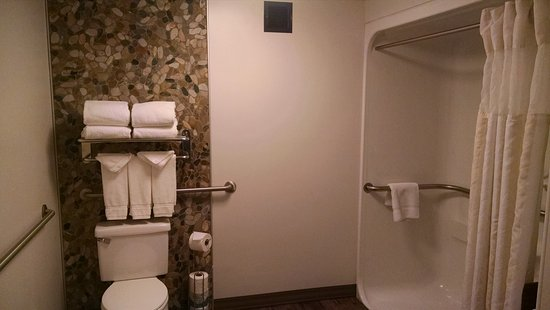 Owings Mills, MD: Roll-In Shower