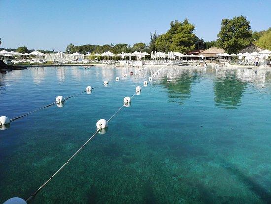 Terme di Saturnia Spa & Golf Resort: la piscina termale vista dalla breakfast room