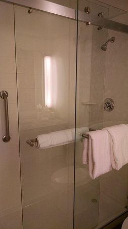 Hilton Garden Inn Owings Mills: King Shower