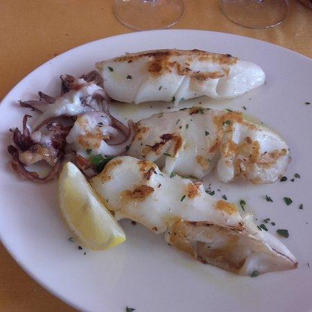 Fiano Romano, Italien: calamaro