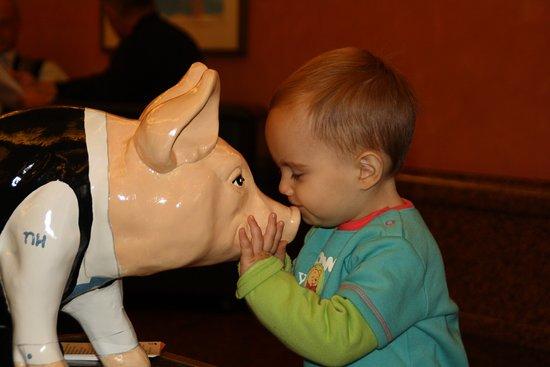 Nordlingen, ألمانيا: Nuestro hijo dando un beso a cerdito de NH Hoteles