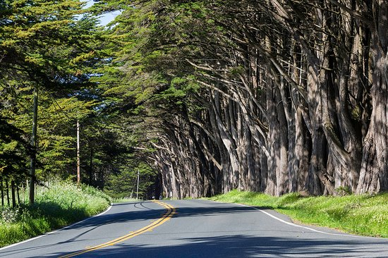 Mendocino, CA: Take the Inspiration Highway!
