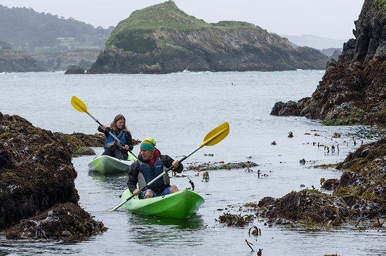 Mendocino County, Kalifornien: Paddle your own... sea kayak!