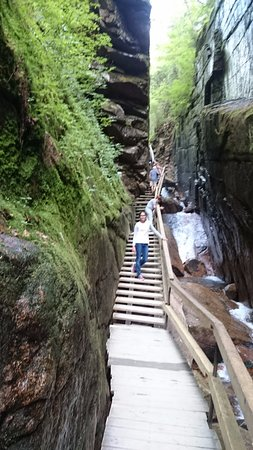 Franconia Notch State Park: Flume Gorge trail