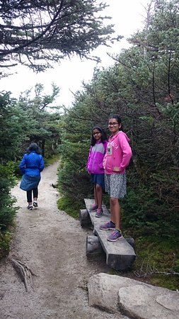 Franconia Notch State Park: Rim trails , canon mountain summit