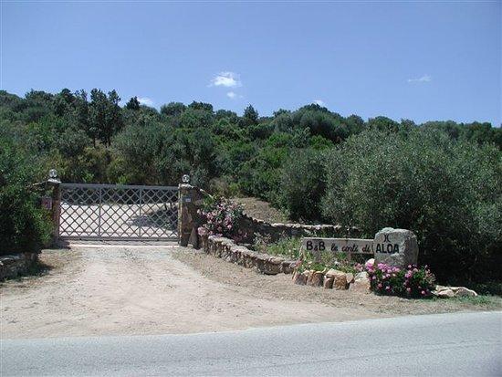 San Pantaleo, Italia: ingresso alla struttura