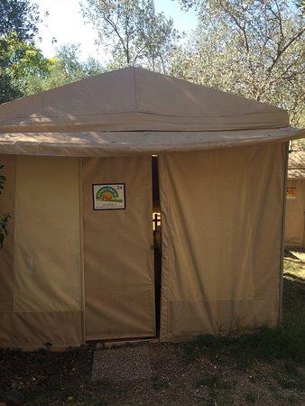 Plus Camping Michelangelo: photo1.jpg