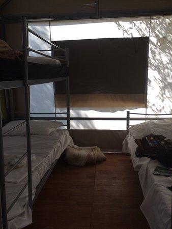 Plus Camping Michelangelo: photo2.jpg