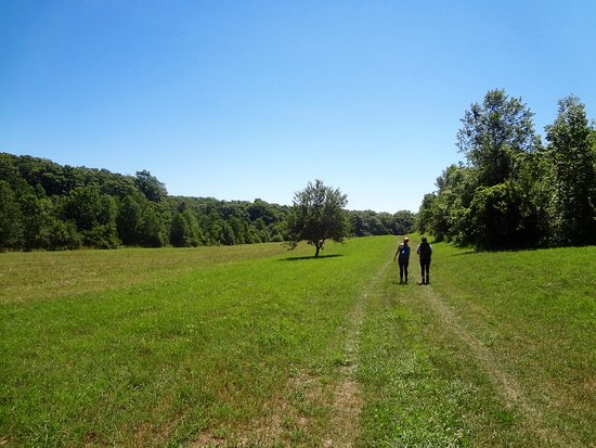 Leland, MI: Strolling down the fields of the old farms