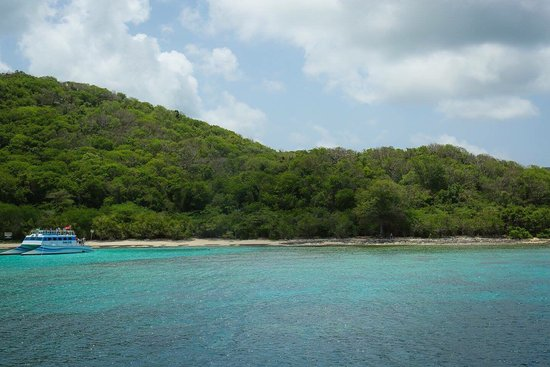 Carlos Rosario Beach : A snorkeling stop we went to with East Island Excursions
