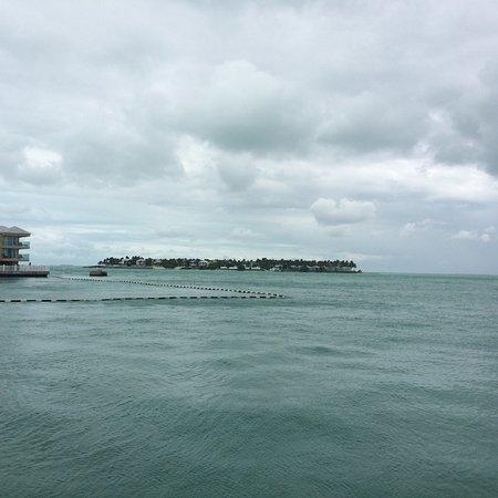 Hyatt Key West Resort and Spa: photo8.jpg