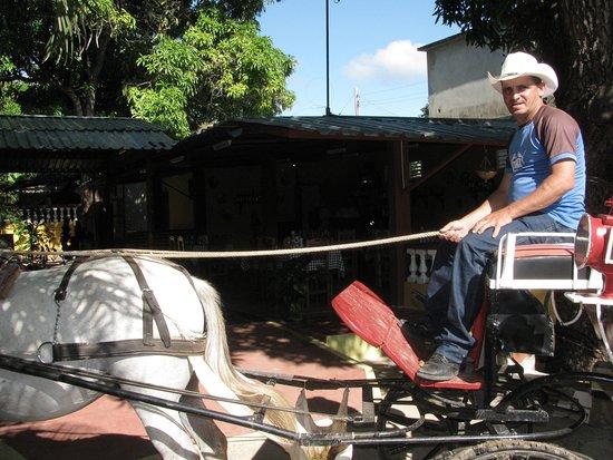 Elbis & Iosbel Horse Tours