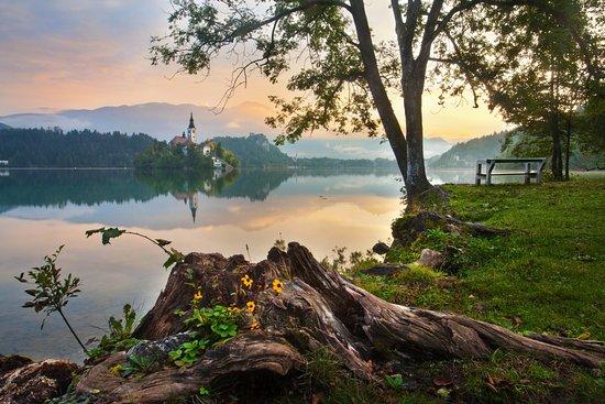 Slowenien: Bled at sunset