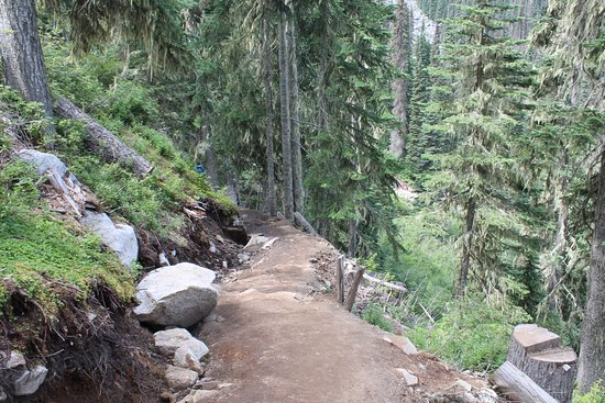 Pemberton, Canadá: up hill trail to middle lake