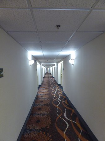 Hampton Inn Sturbridge: Corridor in 3rd floor