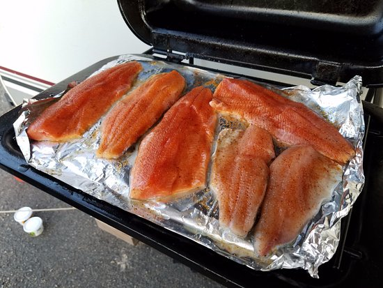 Blue Mesa Fishing : Two Kokanee and one Trout for dinner--awesome!