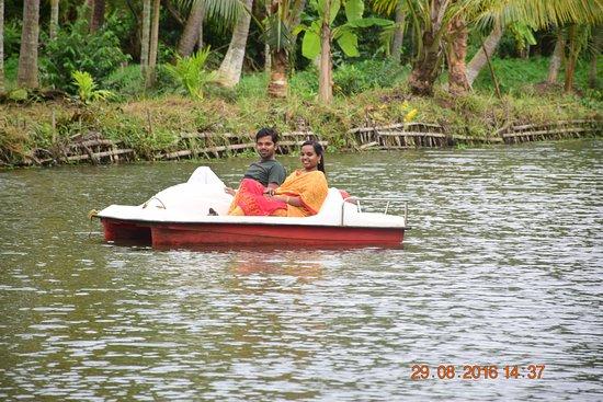 Mangrove Island Village Private Tours: Pedal boat