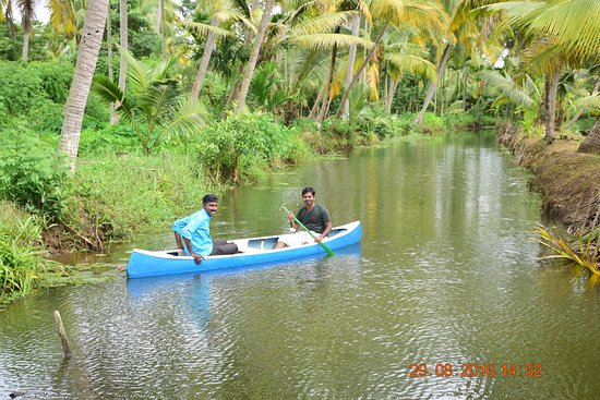 Mangrove Island Village Private Tours: Trying hands on rowing (first time !)