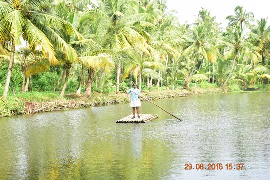 Mangrove Island Village Private Tours: First time on bamboo raft...!