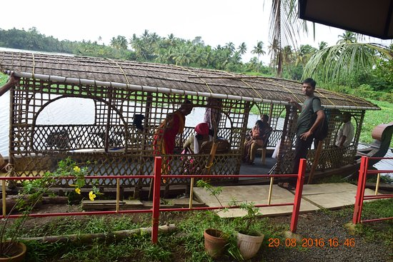Mangrove Island Village Private Tours: The shikara boat.