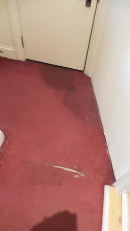Dylan Apartments Earls Court: Dirty, ripped carpet in the hallway