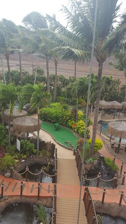 Maui Golf & Sports Park : shot from the top of the Rock Climbing Wall. Photographer Devon Baldwin