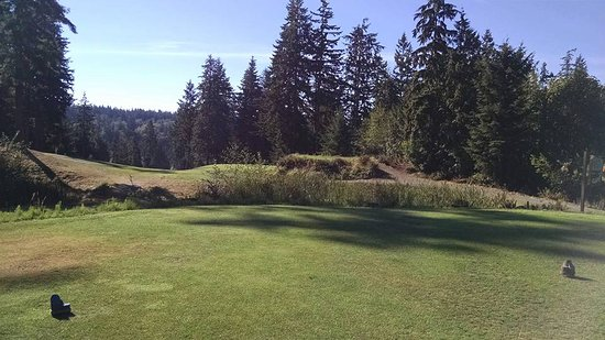 Port Ludlow, Etat de Washington : 11th Tee - good luck finding the fairway! Left is good, right bad....