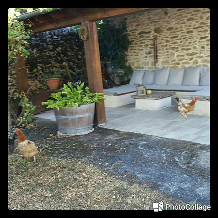 Calvignac, France : 20160830_232912_large.jpg