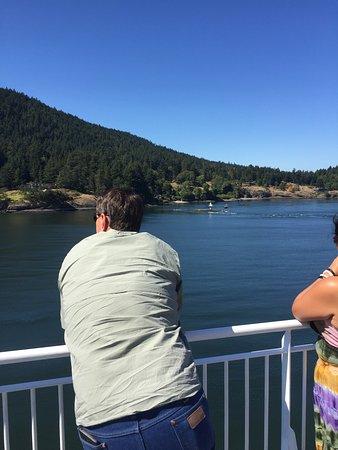 Sidney, Kanada: Enjoying the view
