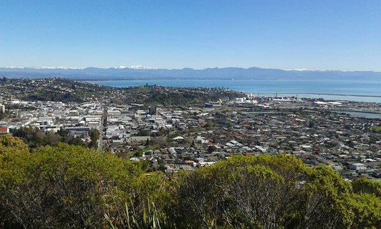 Nelson, Yeni Zelanda: 20160830_113705_large.jpg