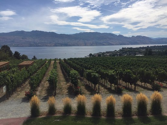 West Kelowna, Canadá: View from the veranda tasting table