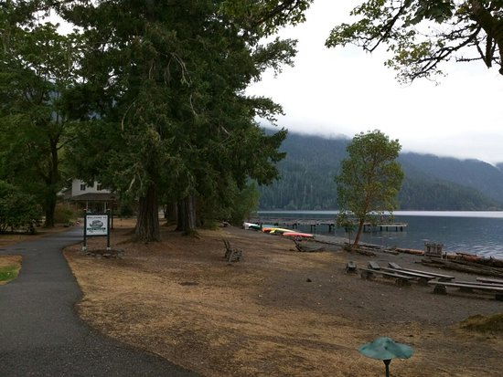 Lake Crescent Lodge: FB_IMG_1472435132931_large.jpg