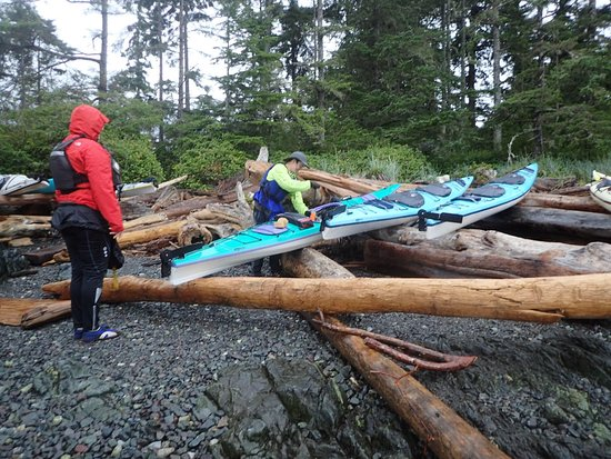 Telegraph Cove, Canadá: Great trip! Thanks Larry & Corey
