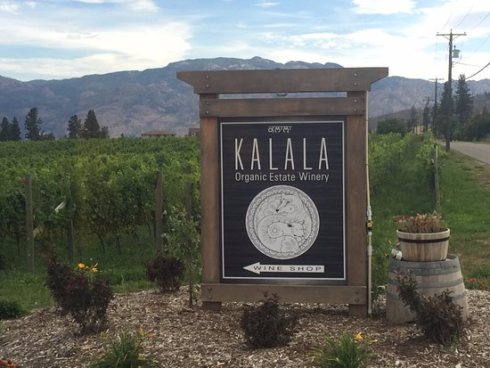 Kalala Organic Estate Winery : Entrance