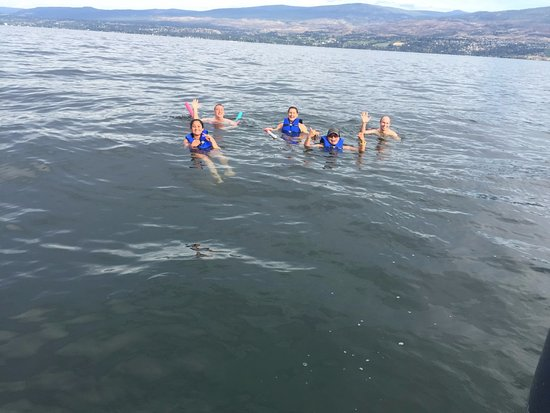 Lembah Okanagan, Kanada: Swimming in the lake