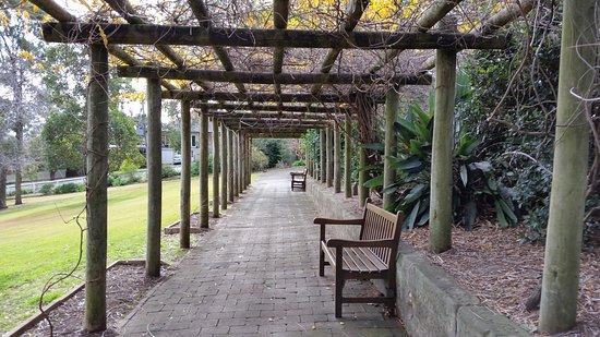 Macarthur park camden