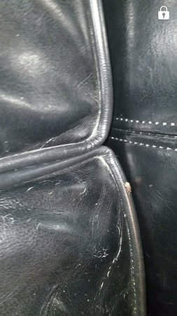 Garden Inn and Suites: Bugs in the couch. Couch was dirty. The leather was old and cracked. The door handle and lock